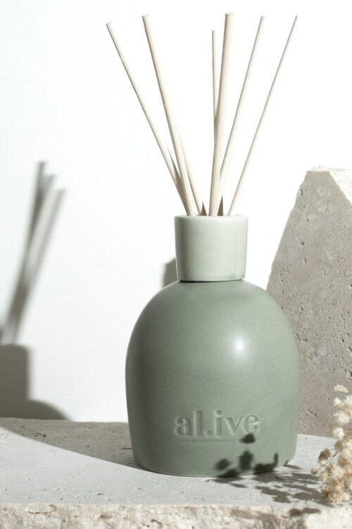 Alive Diffuser Blackcurrant And Caribbean Wood Green