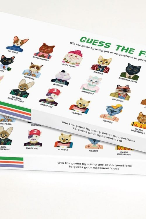 Guess The Feline Game
